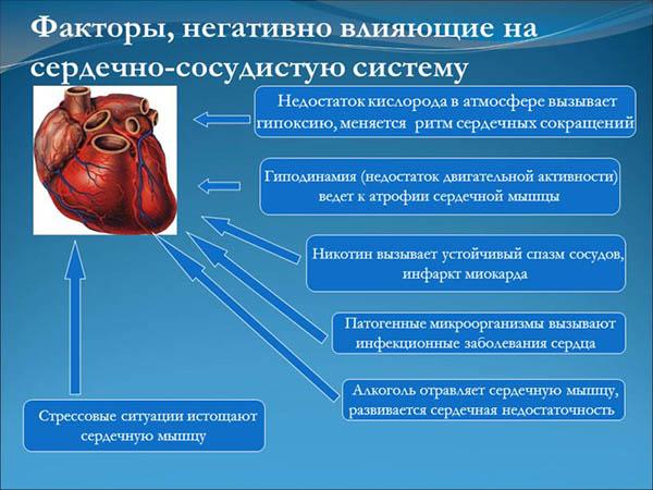 факторы сердечно-сосудистых заболеваний