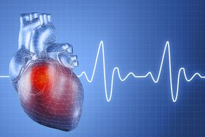 Лекарство Для Сердца После Запоя