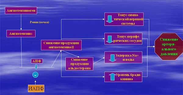 механизм действия иапф