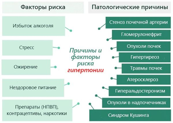 факторы риска аг