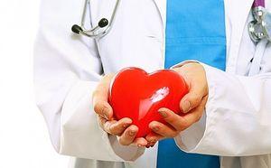 врач держит в руках сердце