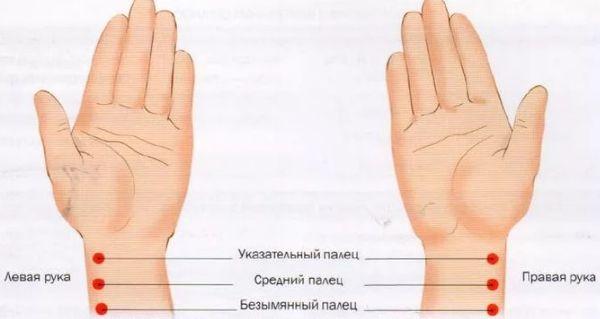 точки пульса на руке