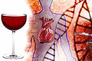 алкоголь и сердце человека