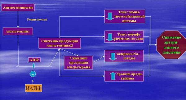 механизм действия ингибиторов