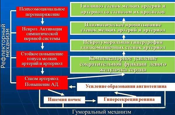 патогенез аг