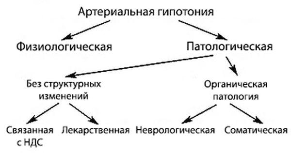 виды гипотонии