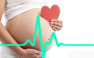 пульс во время беременности