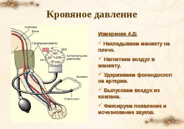 Изображение - Влияние кофе на давление и пульс izmerenie-davleniya-4