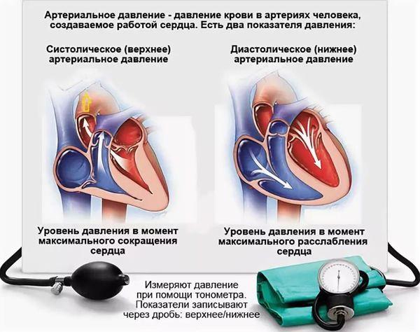 Изображение - Эффективные лекарственные средства для понижения нижнего давления davlenie-2